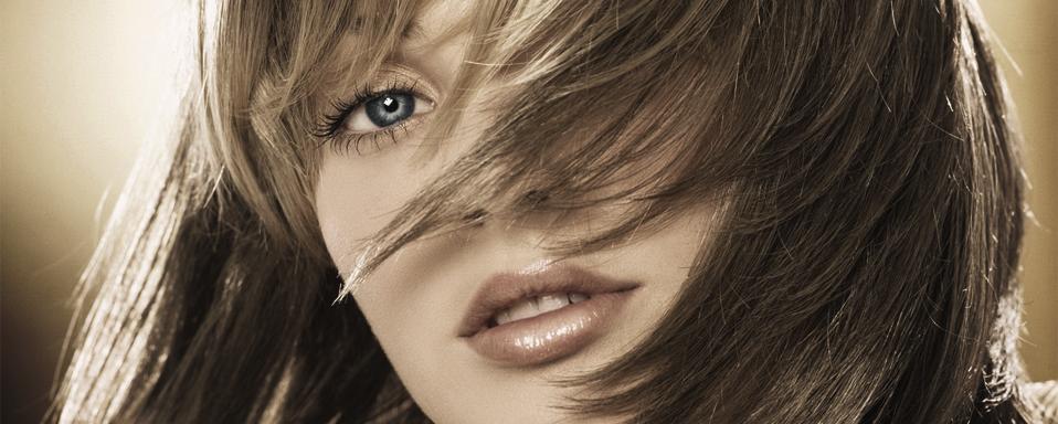 Kezdőlap hairzone